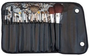 Image of   Morphe 12 PIECE SABLE SET 600